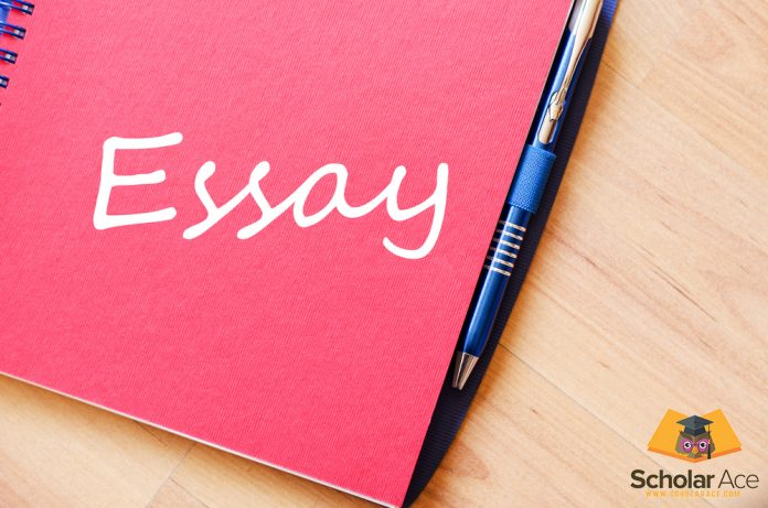 essay word written on diary