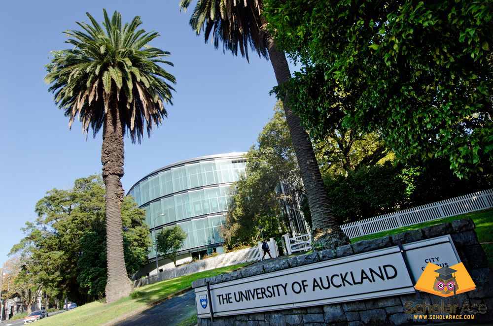 higher education in university of auckland